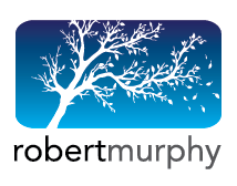 A blog by Robert A. Murphy